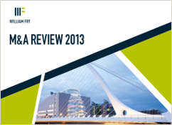 2013 M&A Review